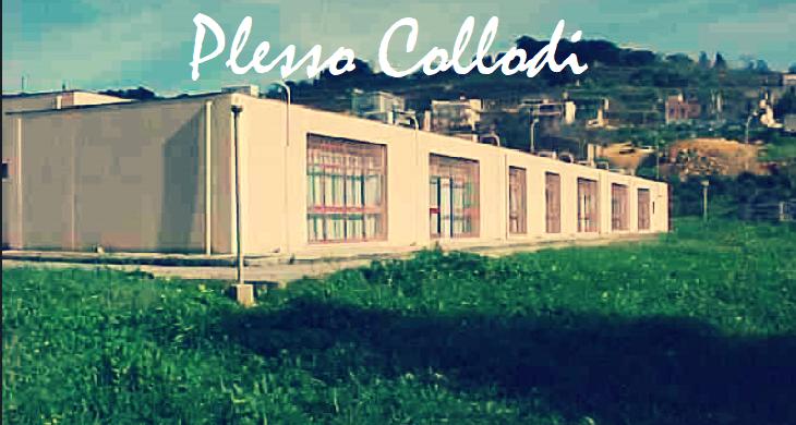 PLESSO COLLODI