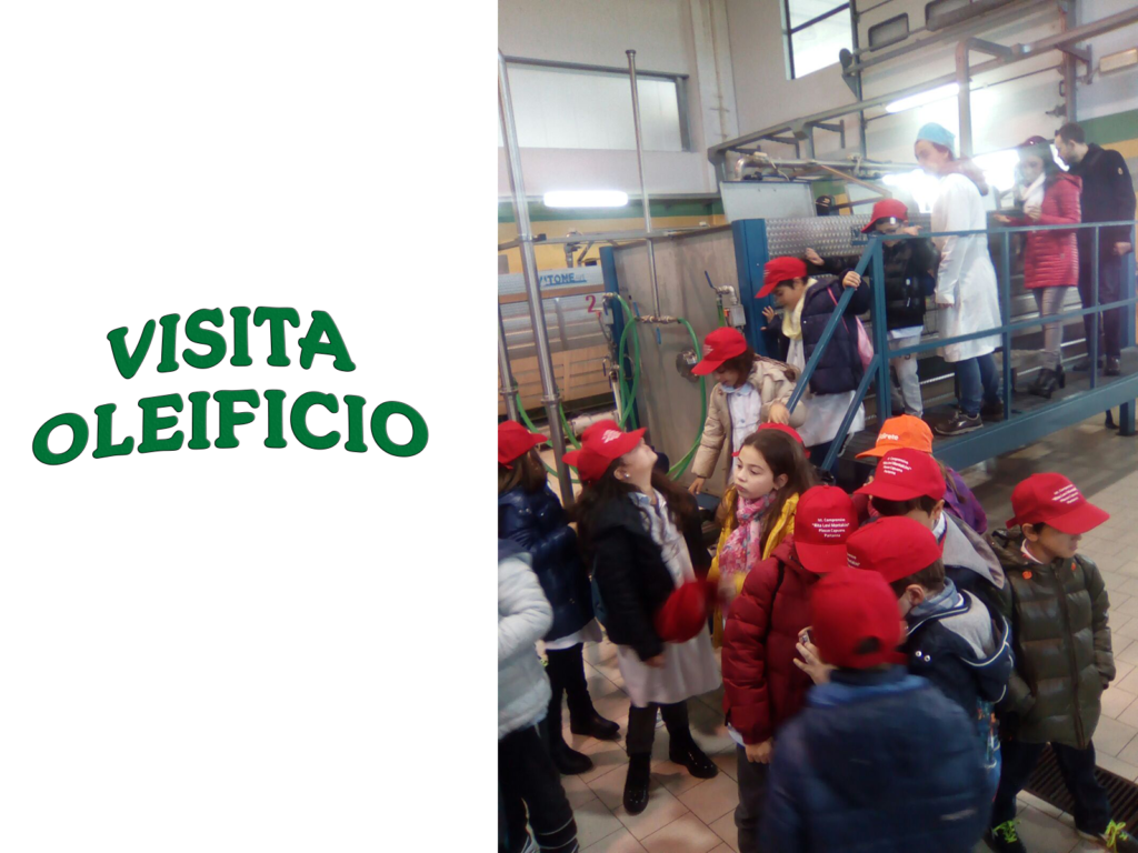 VISITA-OLEIFICO